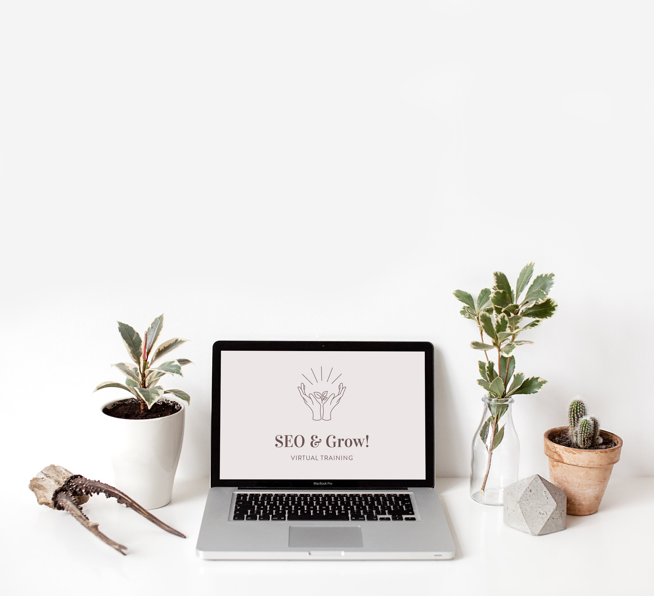 Small Business SEO Course - SEO & Grow!